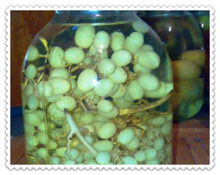 kompot iz vinograda na zimu bez sterilizacii