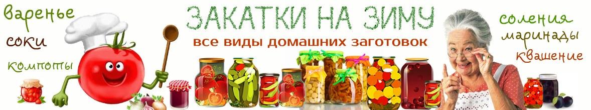 Логотип сайта Закатки. ру