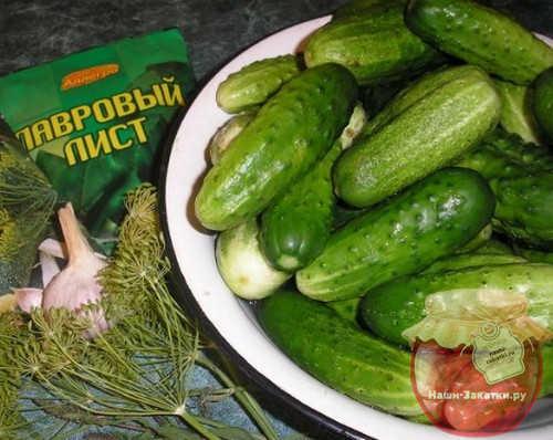 produkty-dlya-kvasheniya-ogurcov